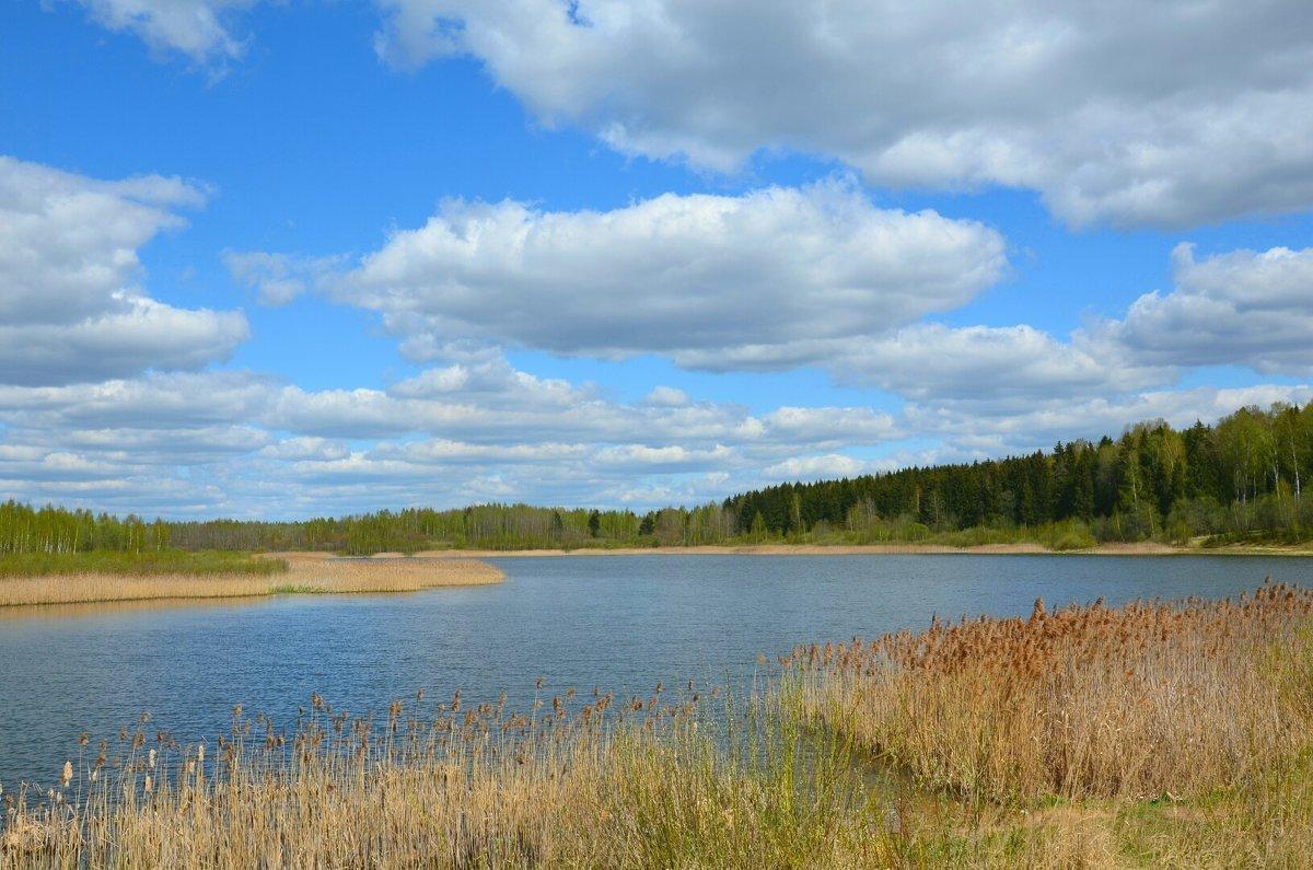рыбалка в смоленской области рославльский район