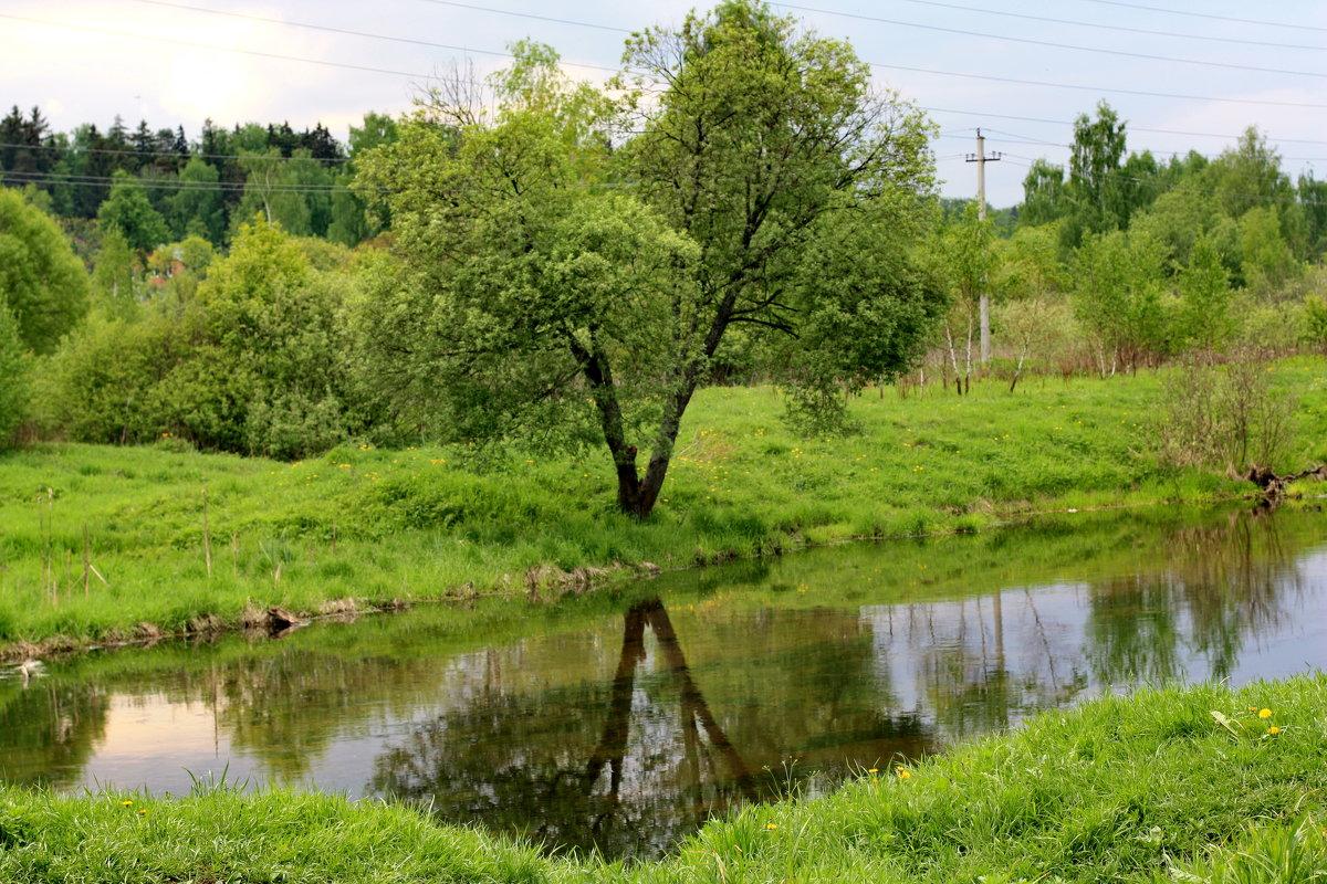 У реки. - Надежда Баликова
