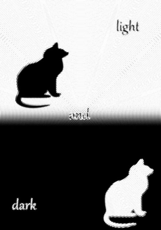 черное и белое - Юлия Денискина