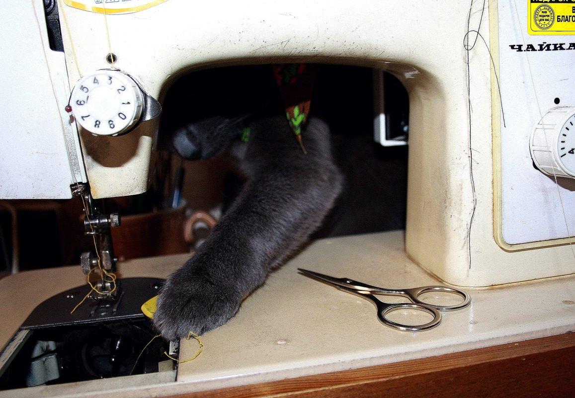 Я ещё на машинке вышивать могу (с)