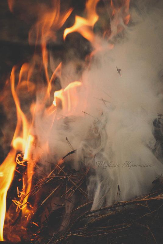 Магия огня - Кристина Щукина
