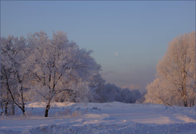 Зимнее - Наталия Григорьева