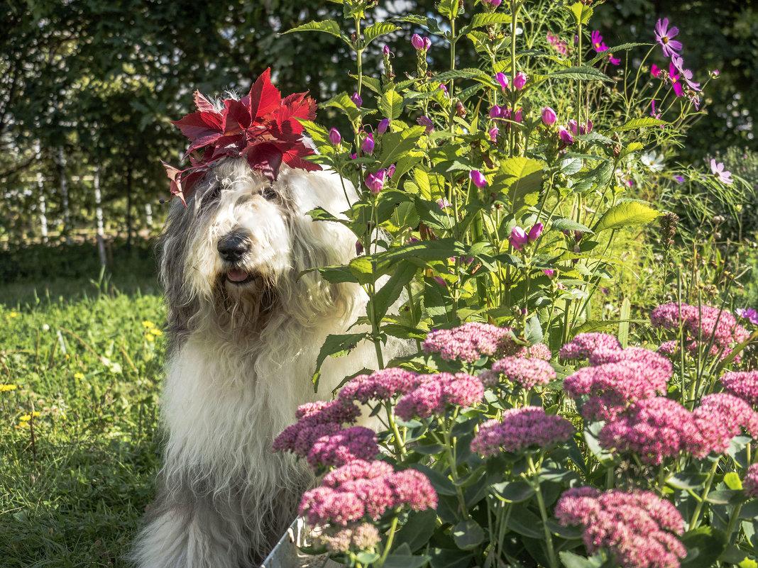 в цветочках - Лариса Батурова