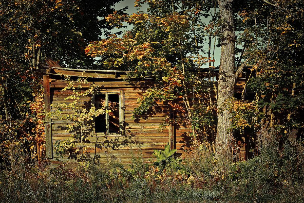 Осень, как время жизни - Сергей В. Комаров