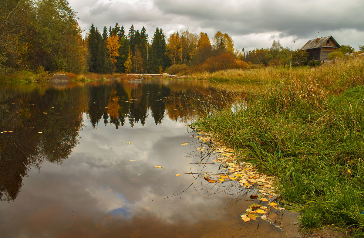 Осень золотая. - Марина Шубина