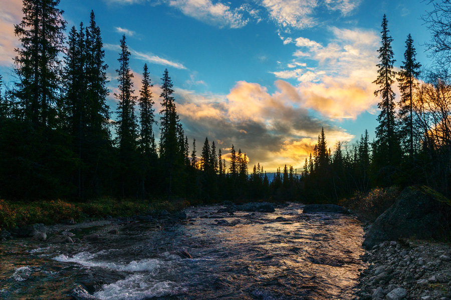 Вечерняя река - Алексей Видов