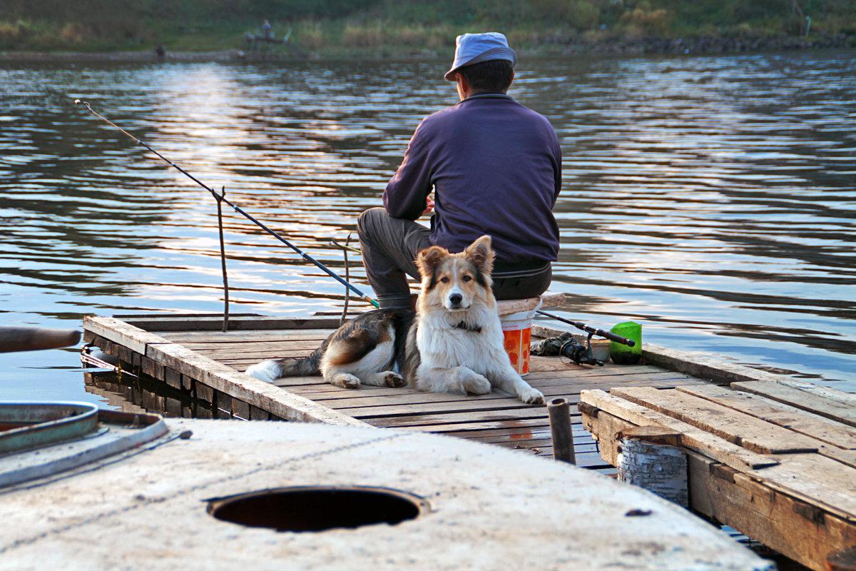 рыбалка собачий