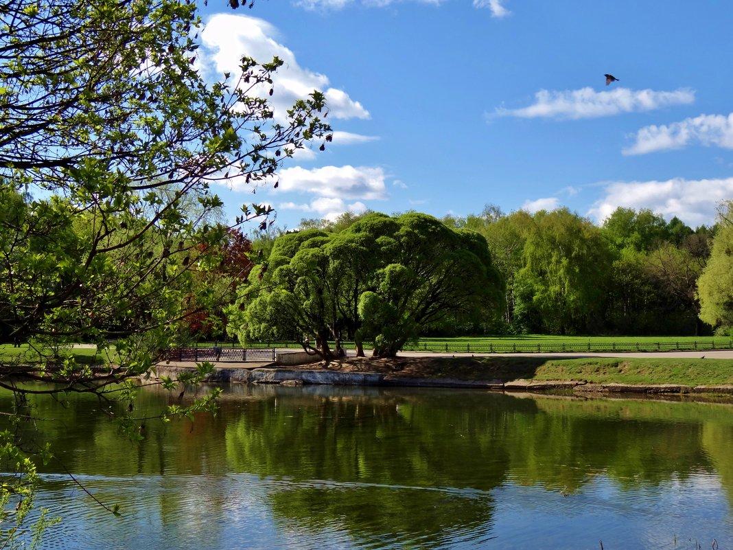 парк Владыкино - Валентина. .