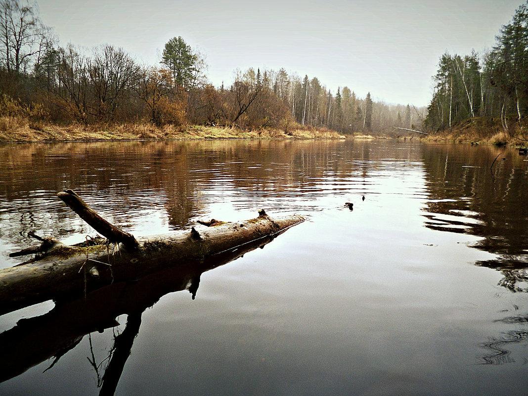 рыбалка на юге кировской области