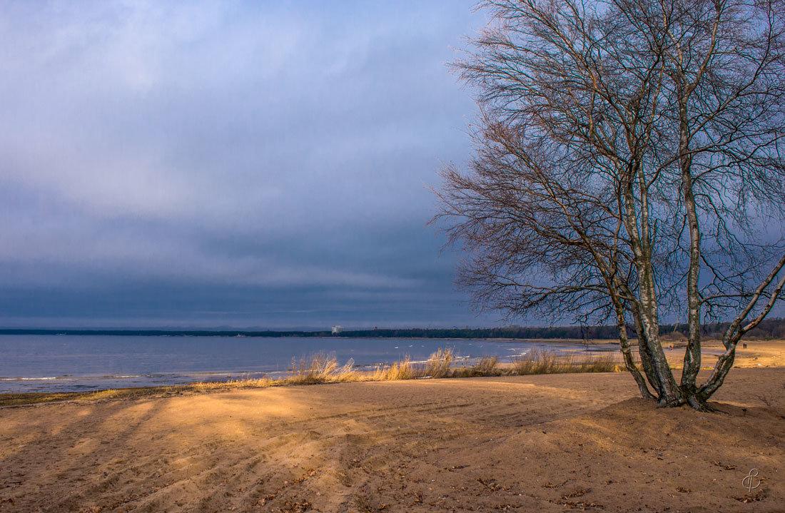 Пляж у парка - Виталий