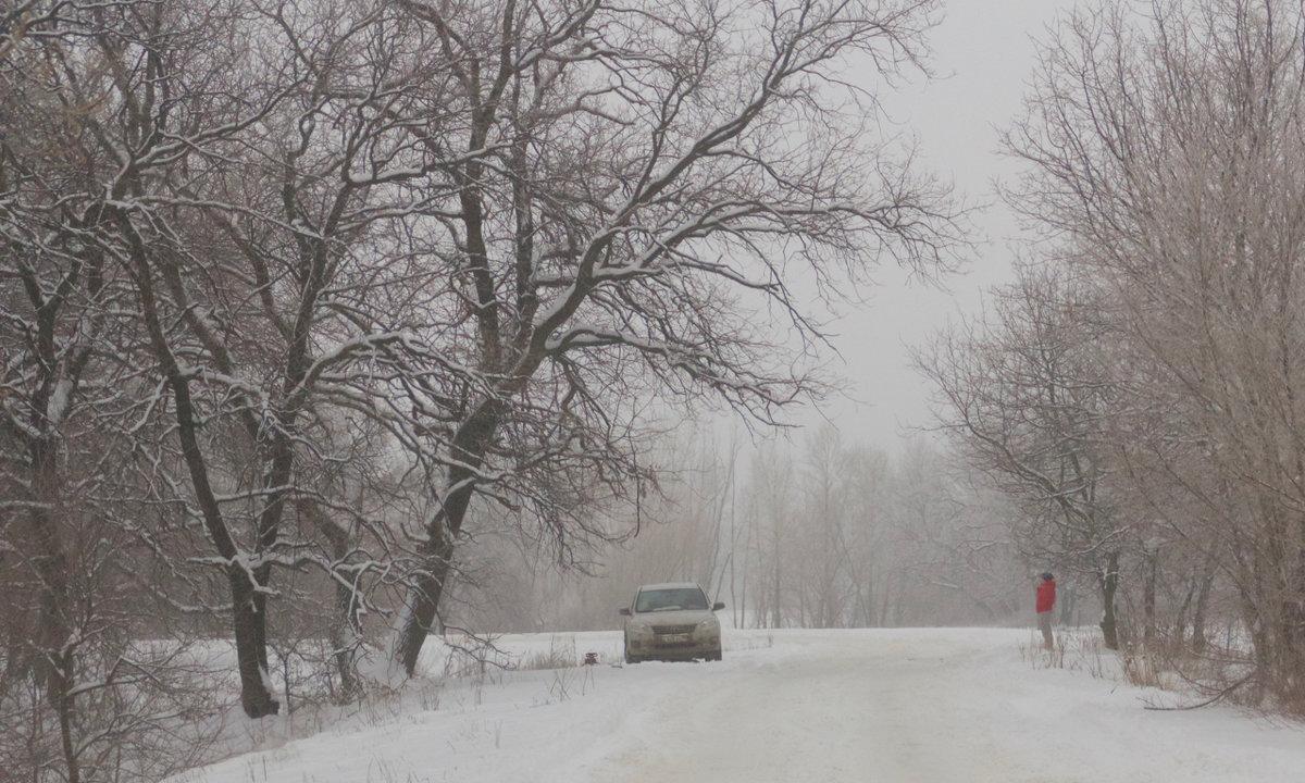 Туман - Viktor Eremenko