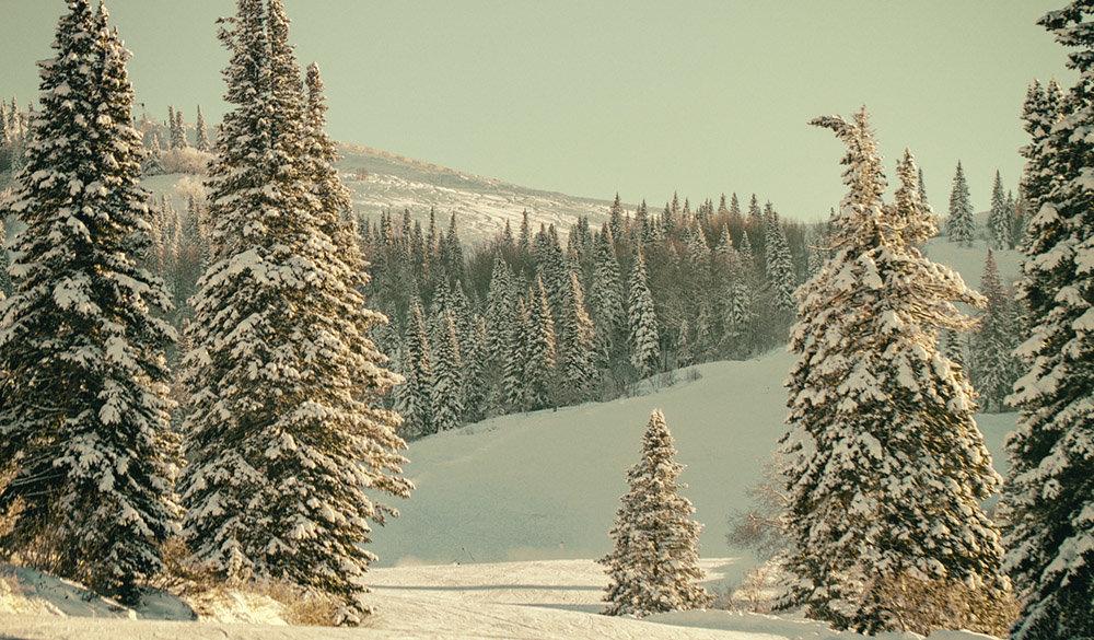 Княжьи горы - Megalara Garuda