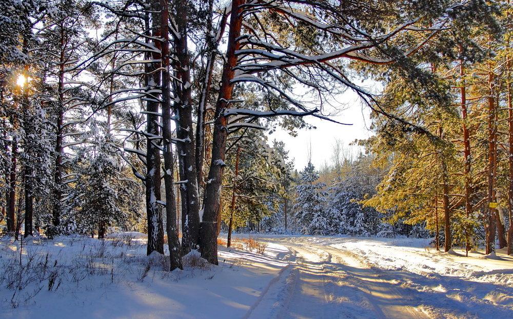 Январских дней холодное тепло.... - Лесо-Вед (Баранов)