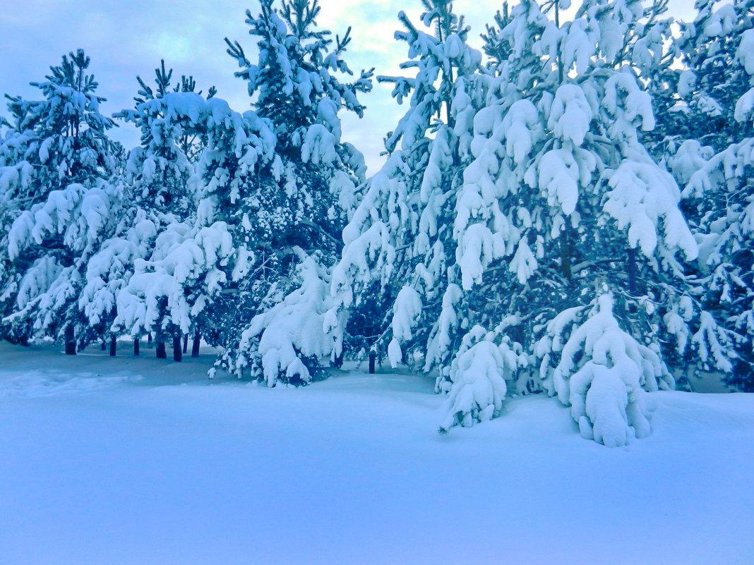 Снежное.. - Светлана
