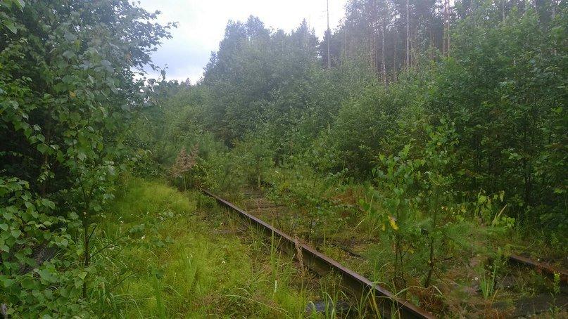 Заброшенная железная дорога - Алексей