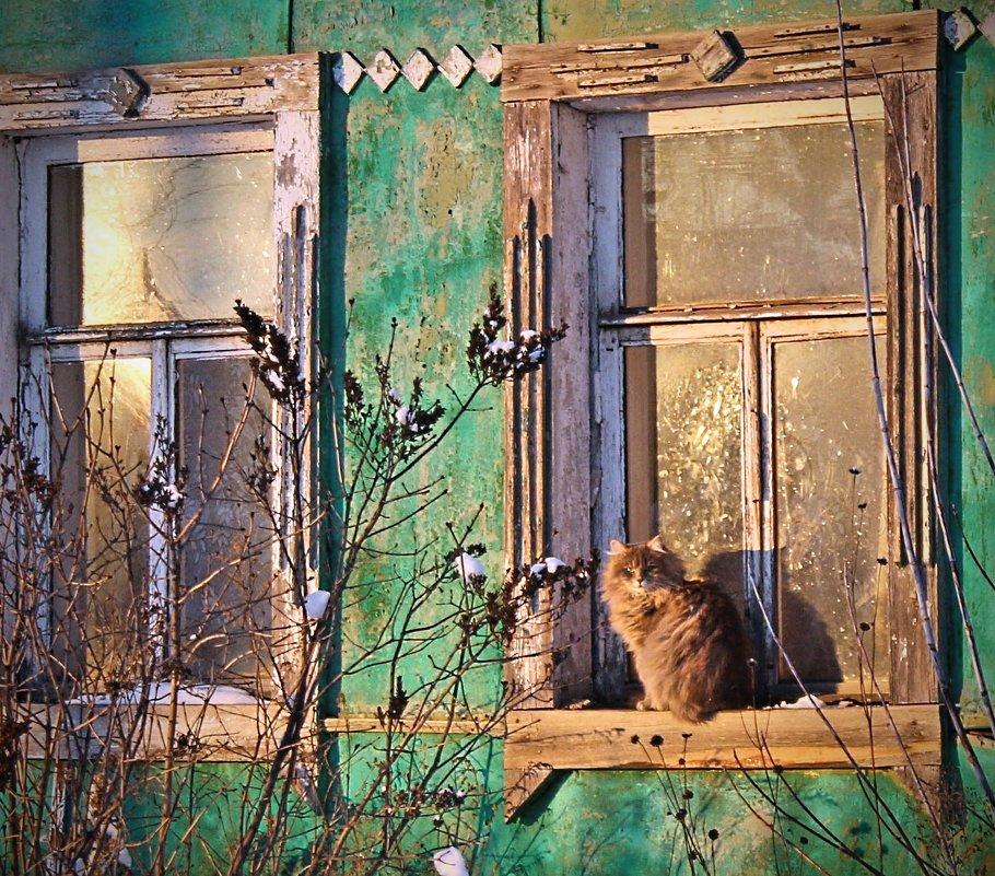 ... пригрелся...)) - Александр Герасенков