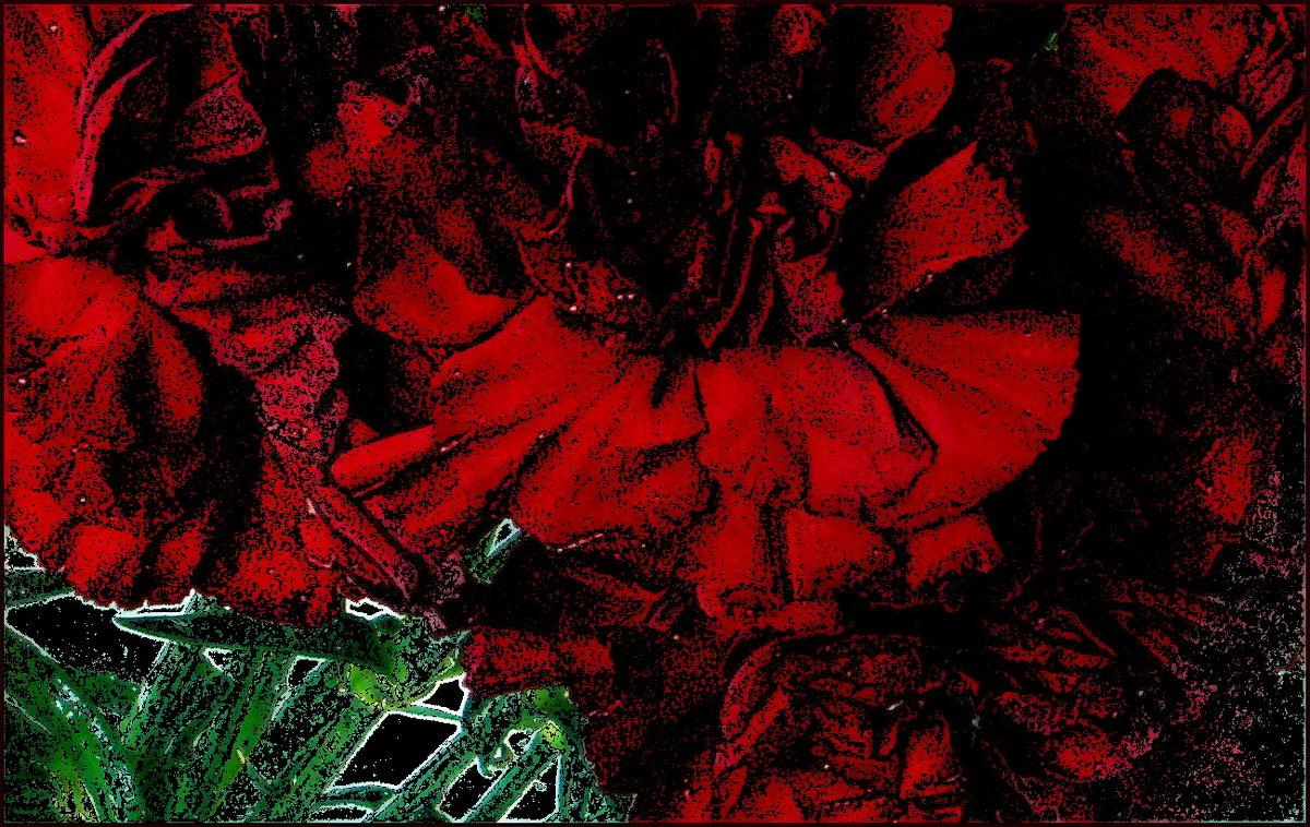 Красные гвоздики - Нина Корешкова
