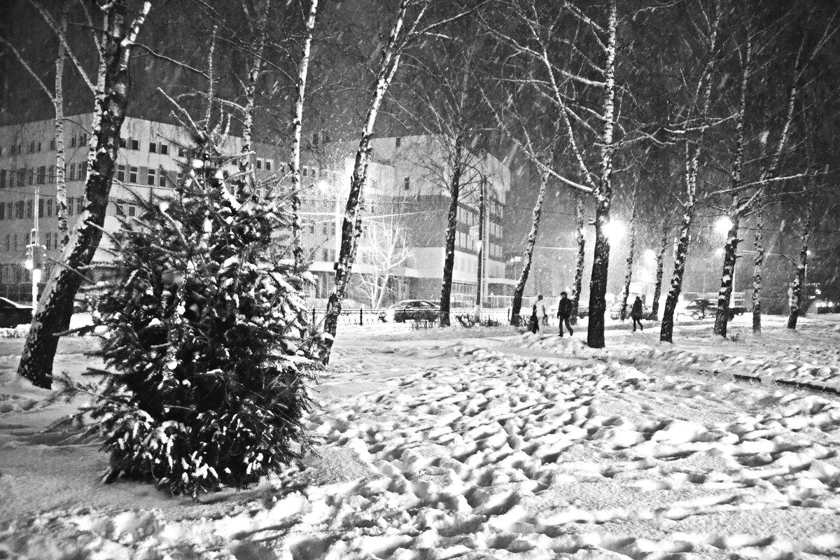 Зимушка-зима - Сергей F