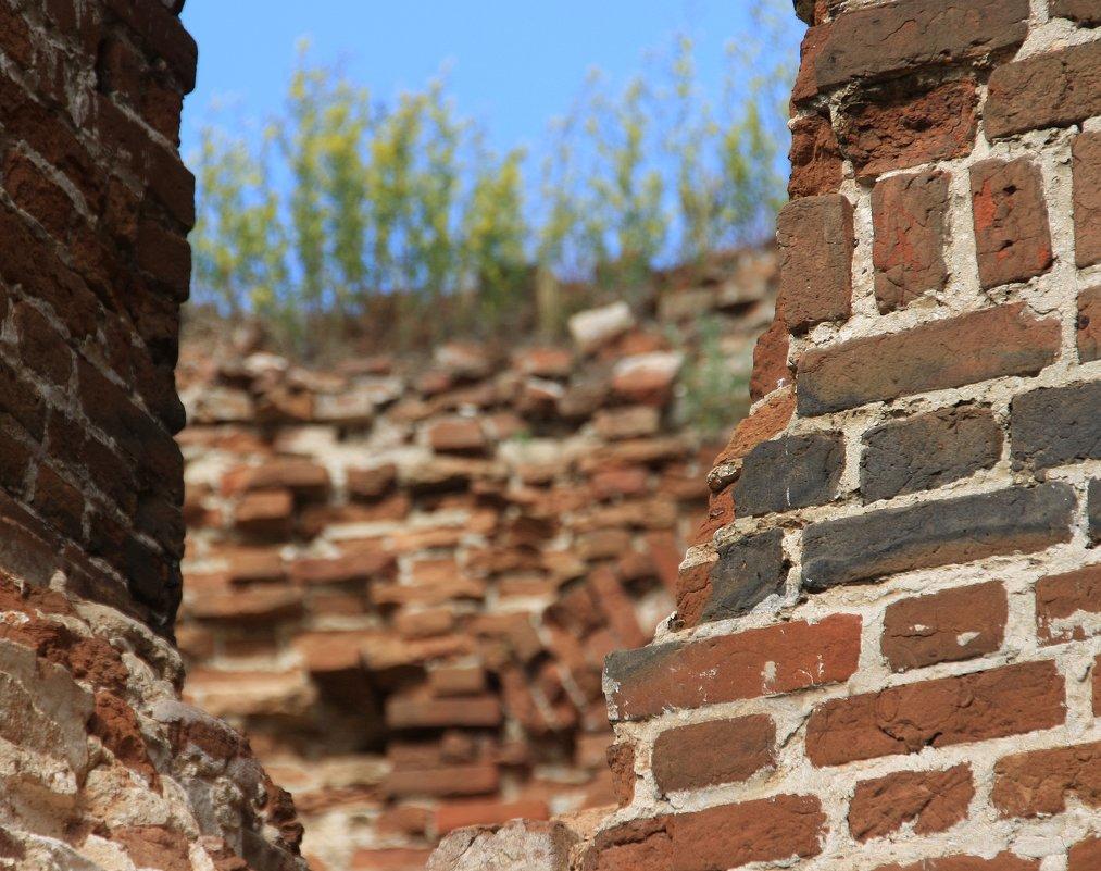 Крепкие  старые  стены -  и новая жизнь.... - Валерия  Полещикова