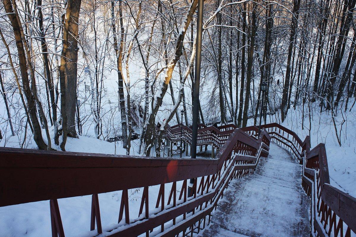 Лестница из Дьяковского сада в Голосовой овраг - Елена Павлова (Смолова)