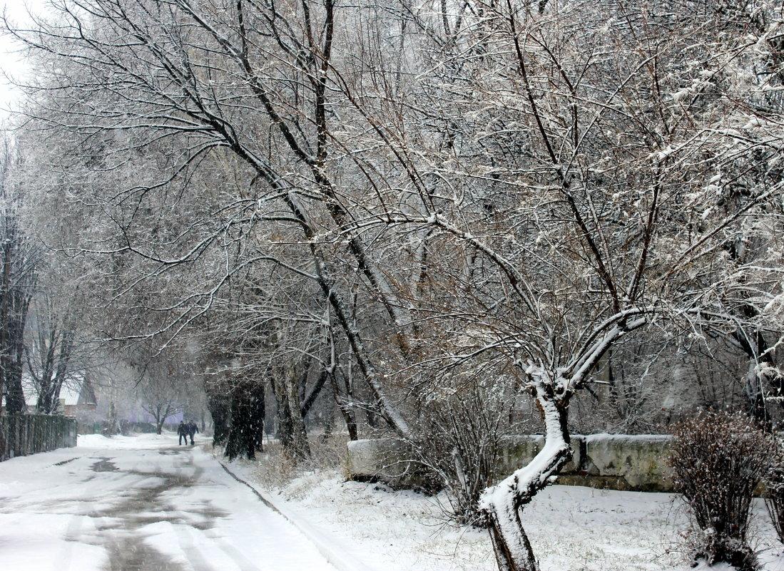 Дивная гармония зимы. - Валентина ツ ღ✿ღ