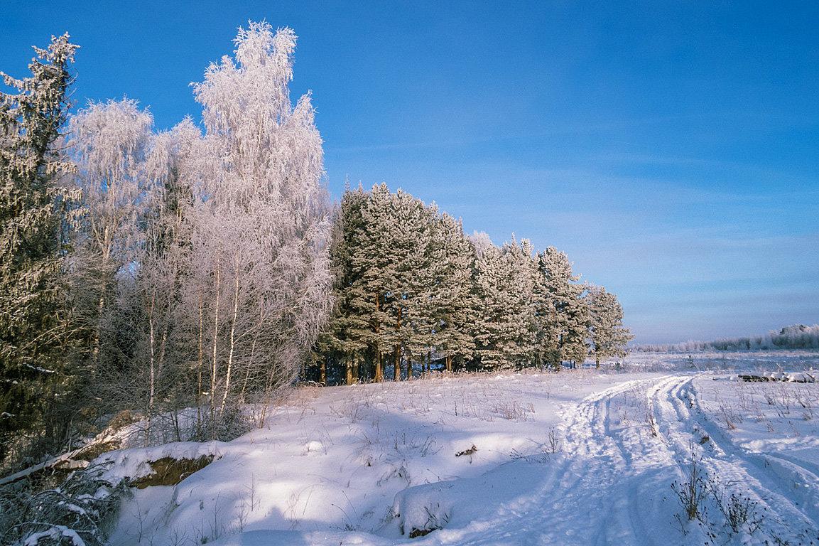 зимнее поле - Сергей Цветков