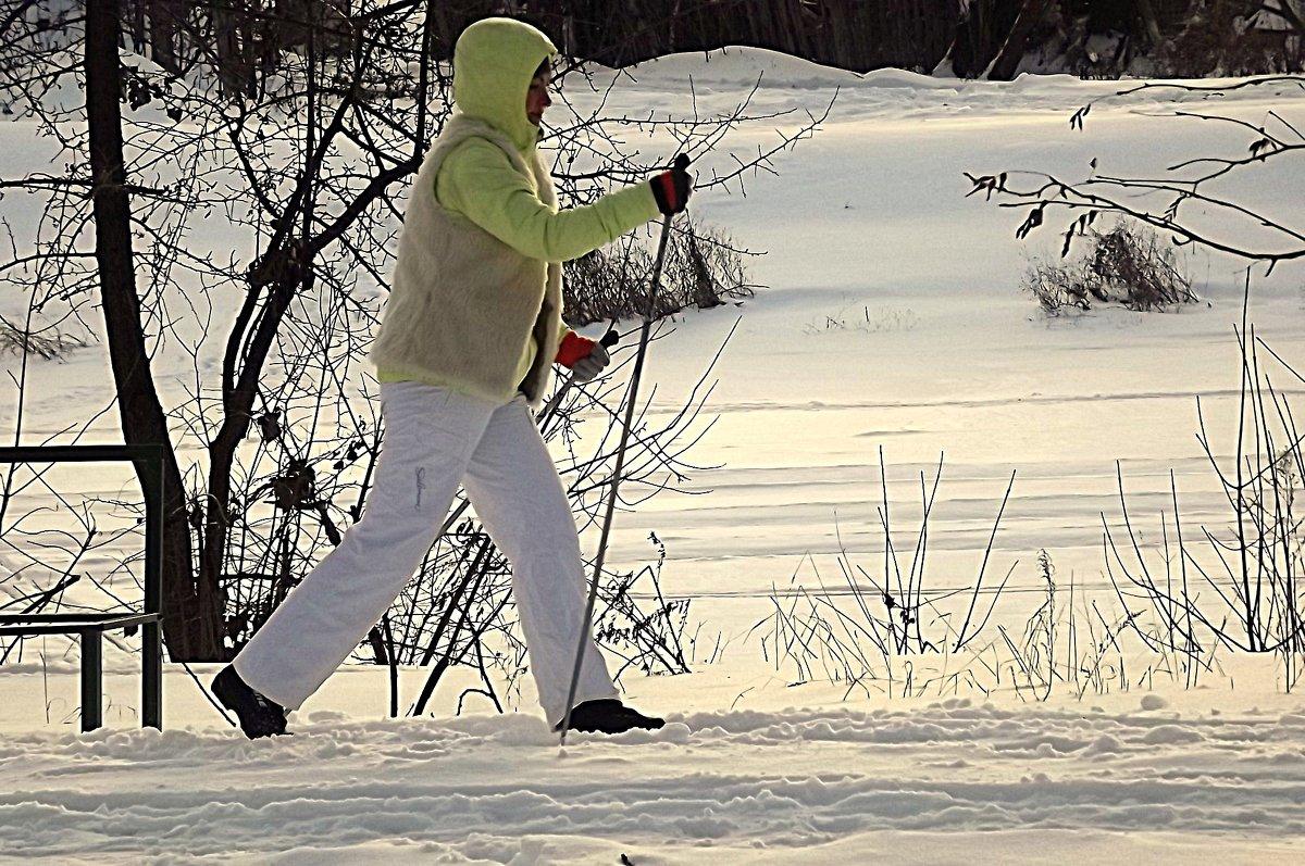 Лыжница - Андрей Сотников
