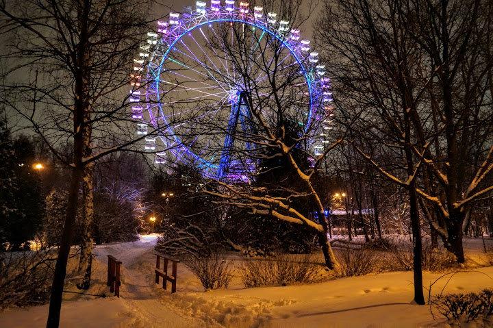 """ В зимнем парке так бело, так бело..."" - Larisa Ereshchenko"