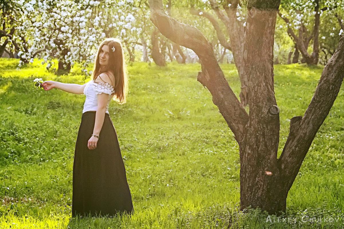 В яблоневом саду - Алексей MOPS Чулков