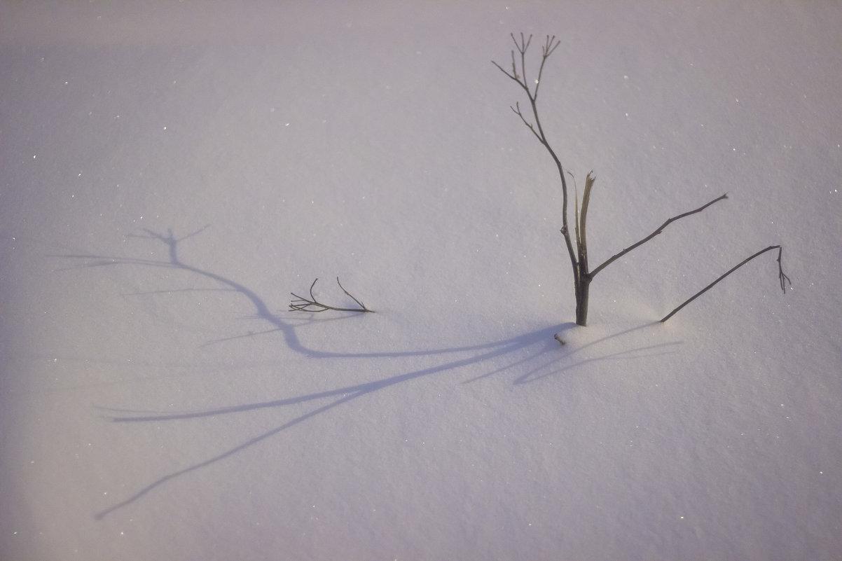 Тени на снегу - отпечатки душ (с) Кипелов - Юля Колосова