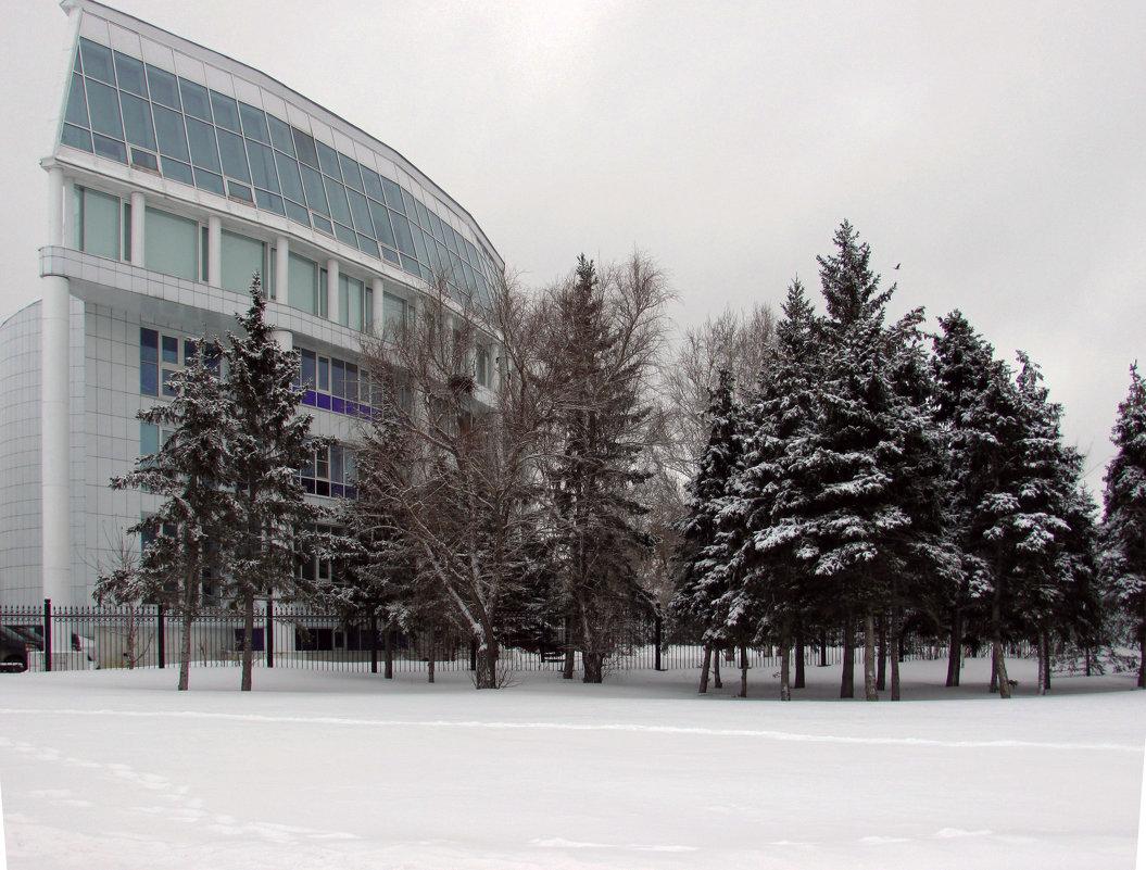 Мой город зимой - раиса Орловская