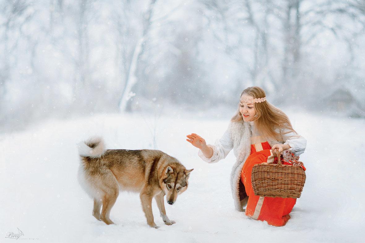 Зимняя сказка - Victor Brig