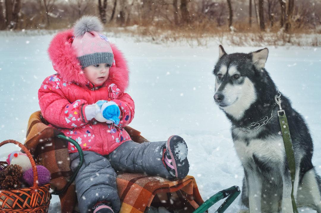 Малика на зимней прогулке с Лолой - Ксения Довгопол