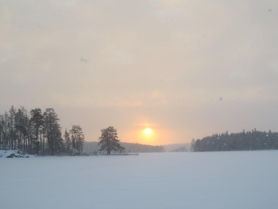 снегопад - Елена