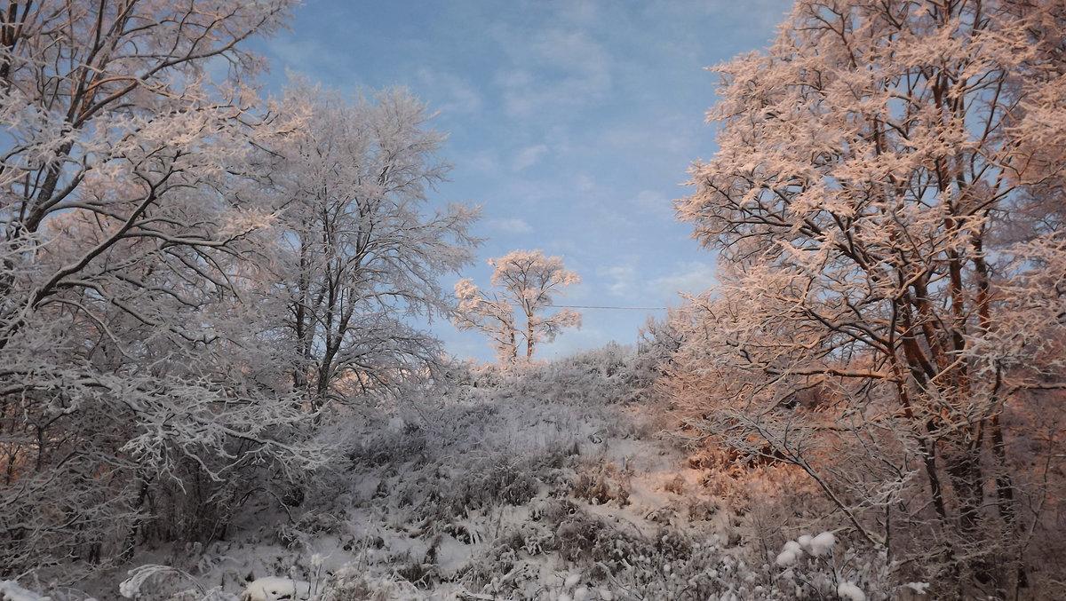 зимний пейзаж - svetlana