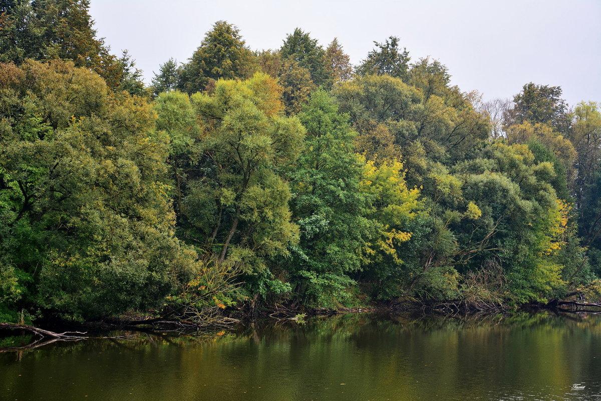 Есть в графском парке,Старый пруд........ - Paparazzi