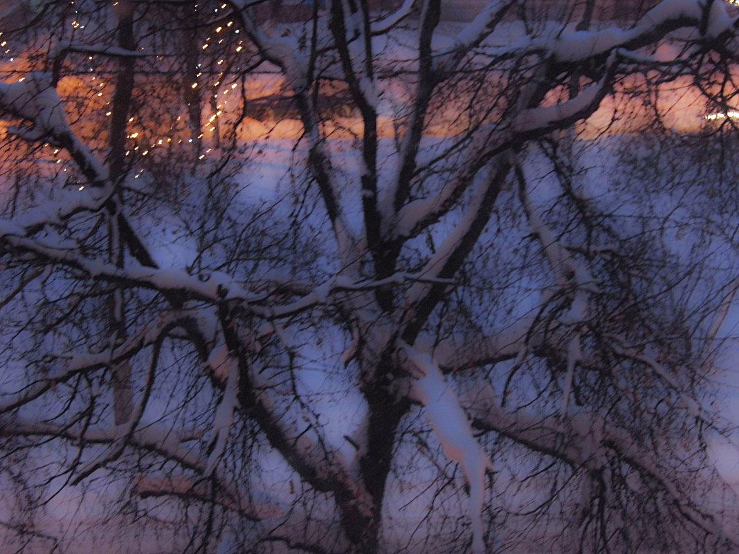 зима - Юлия Денискина