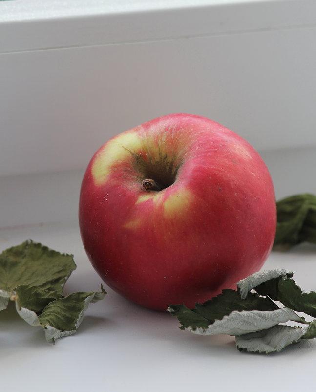 Натюрморт с яблоком - victor Lion