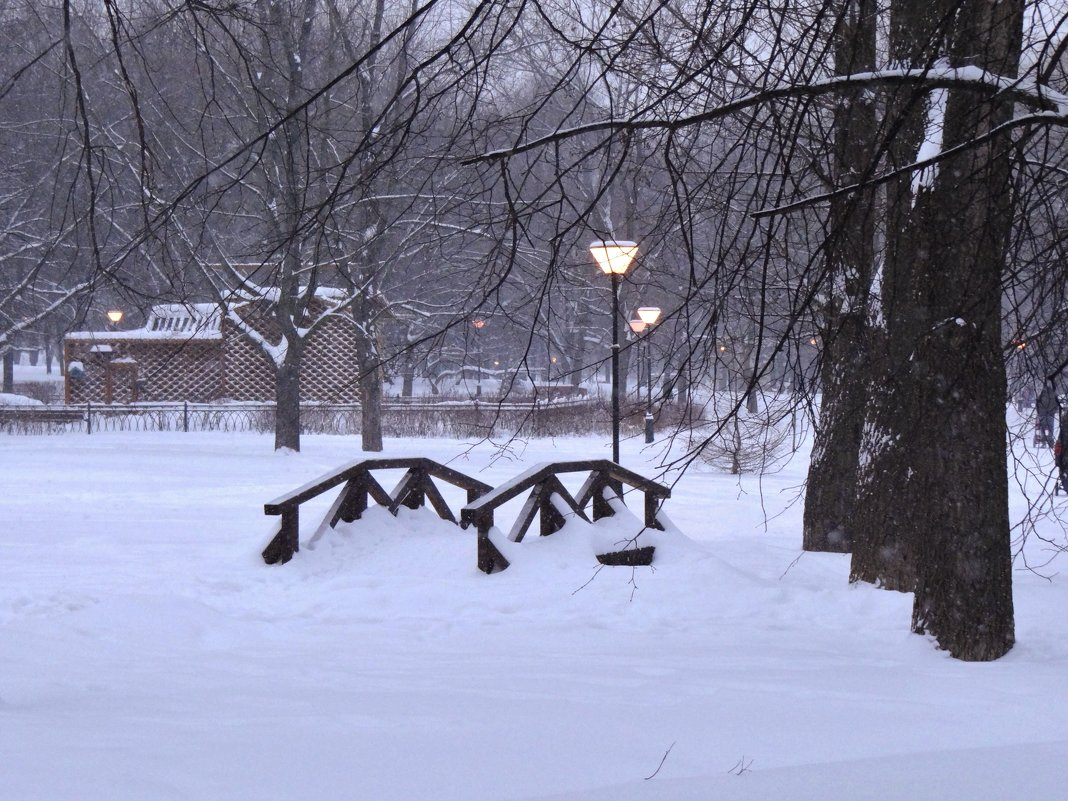 вечереет в парке - Валентина. .