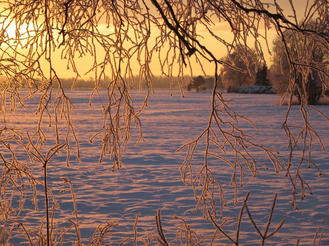 морозным утром ранним... - Mariya laimite
