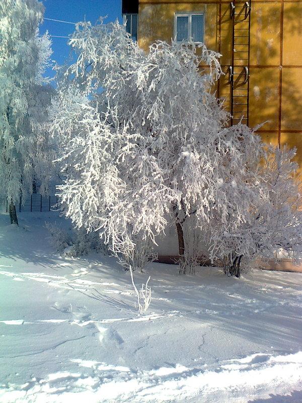 Зимушка зима. - Андрей