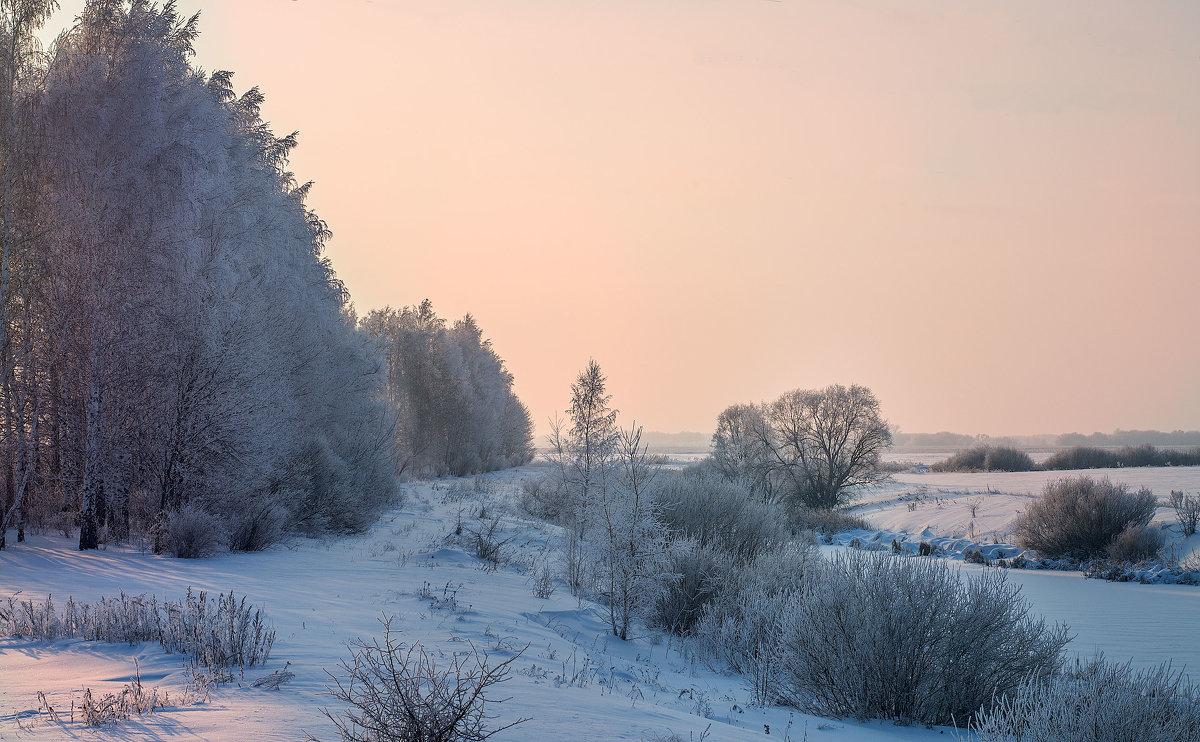 зима - Ольга Энговатова