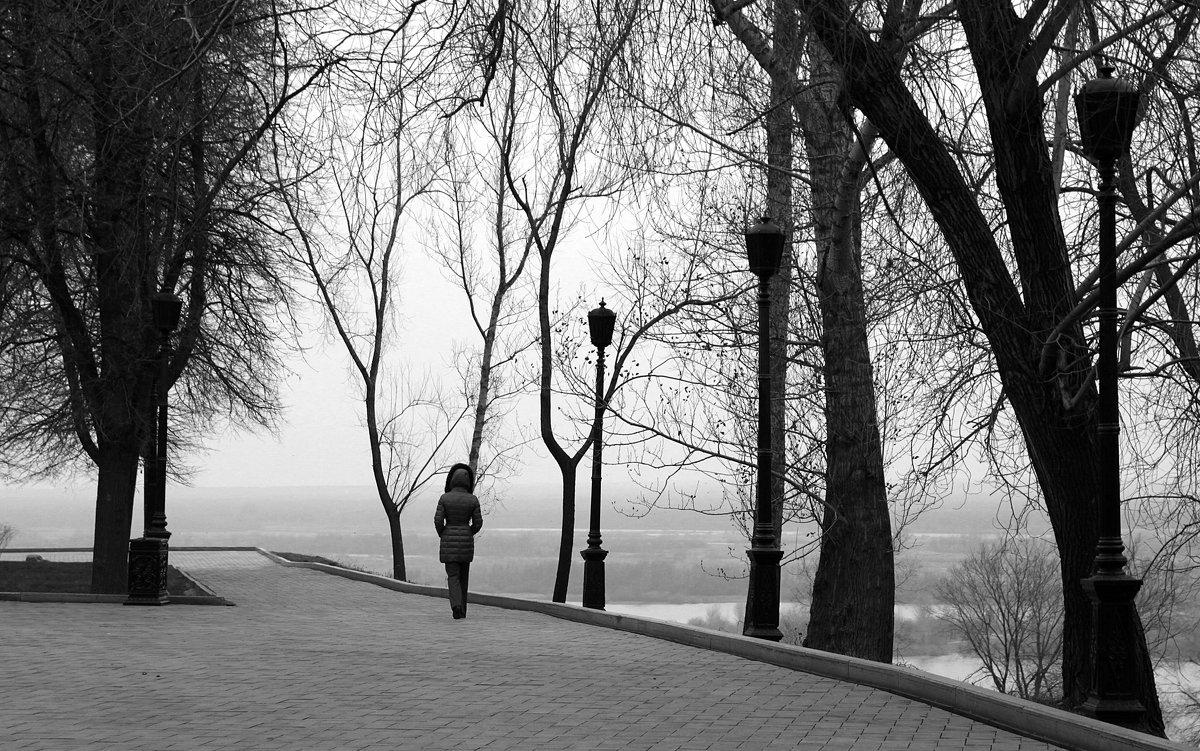 * - Alexandr Shemetov