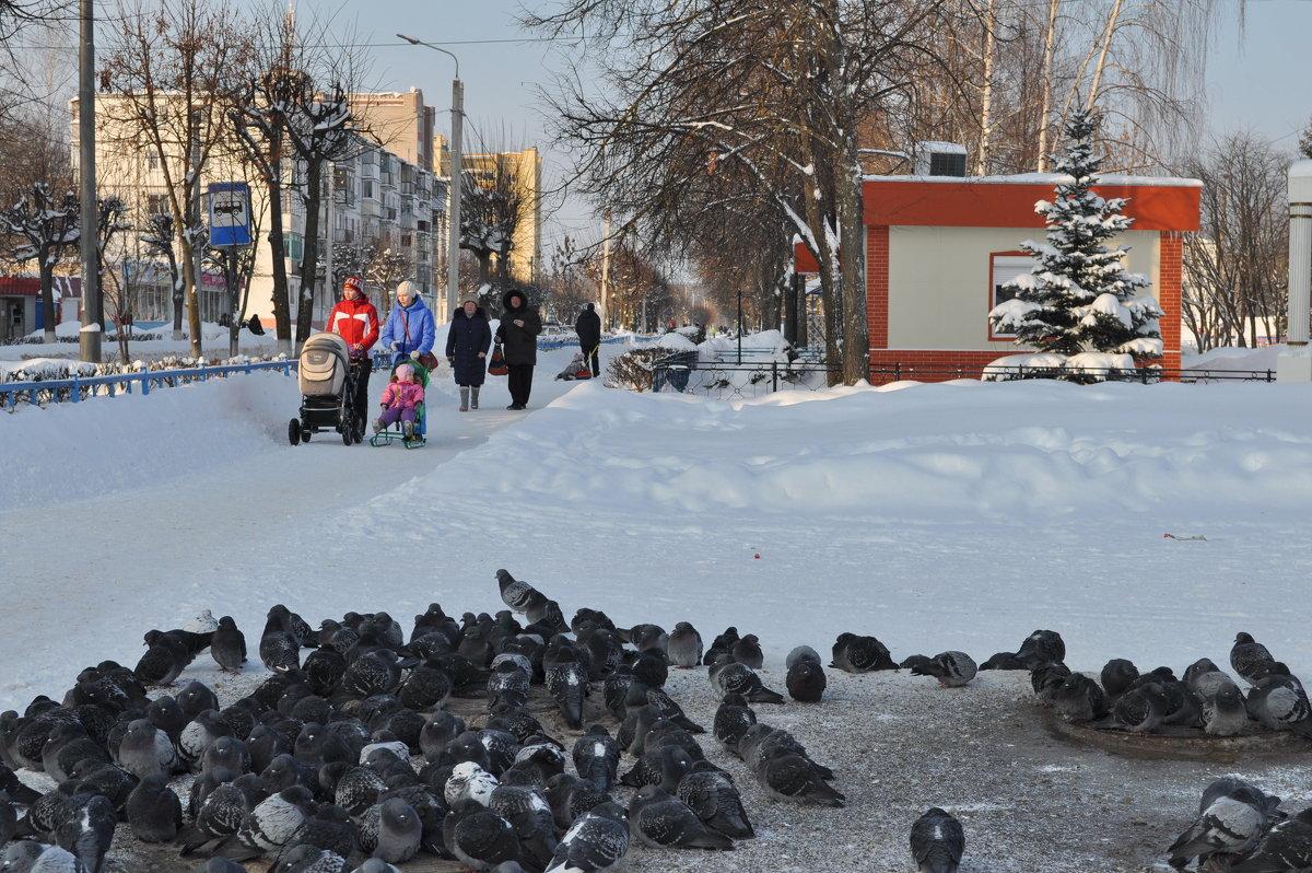 Мороз и солнце - Иван Торопов