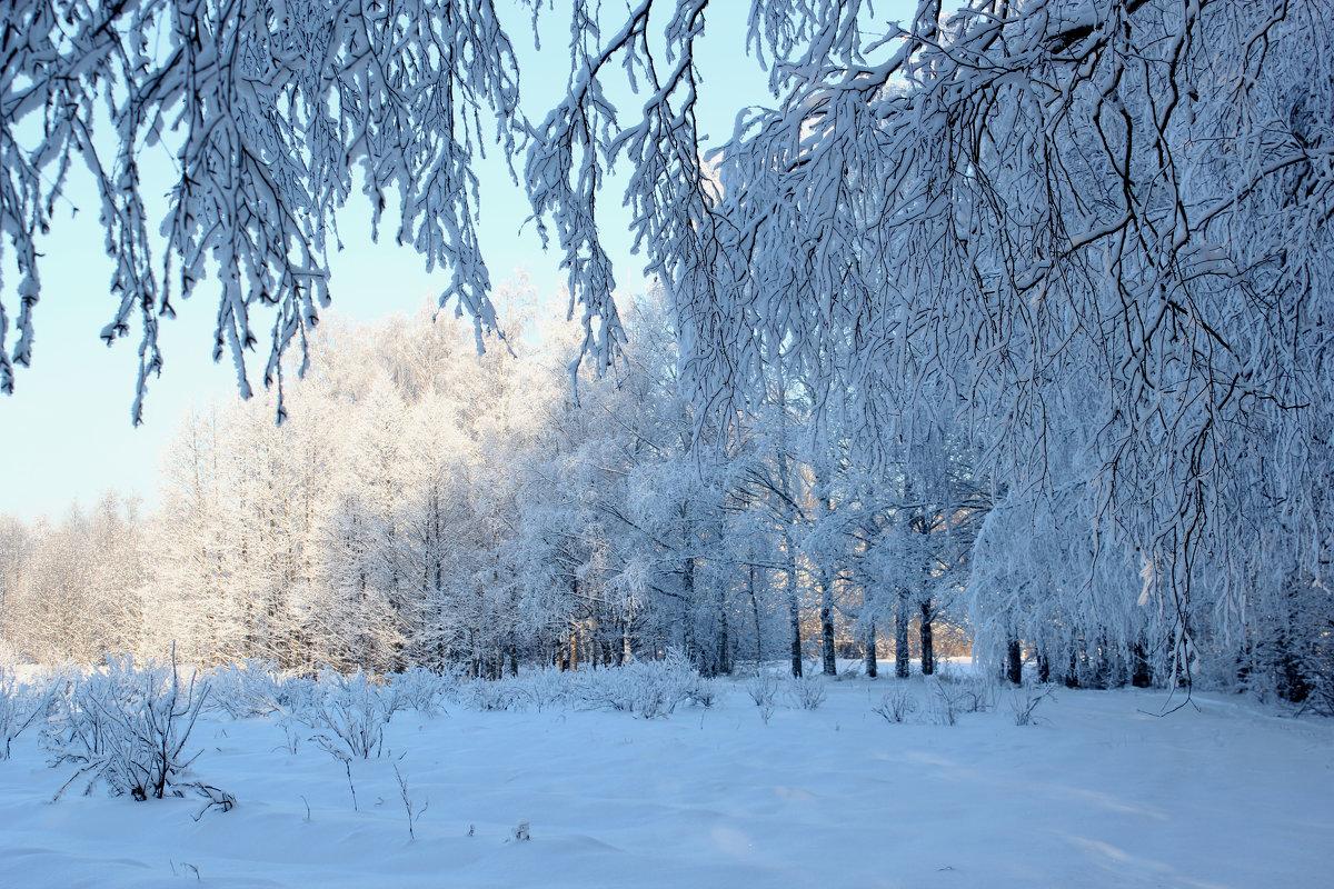Мороз и солнце! - Наталья Лунева