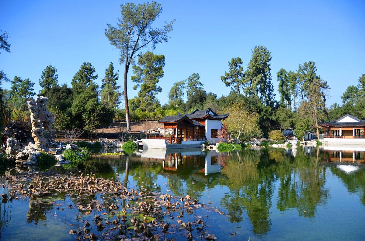 Японский сад - Николай Танаев