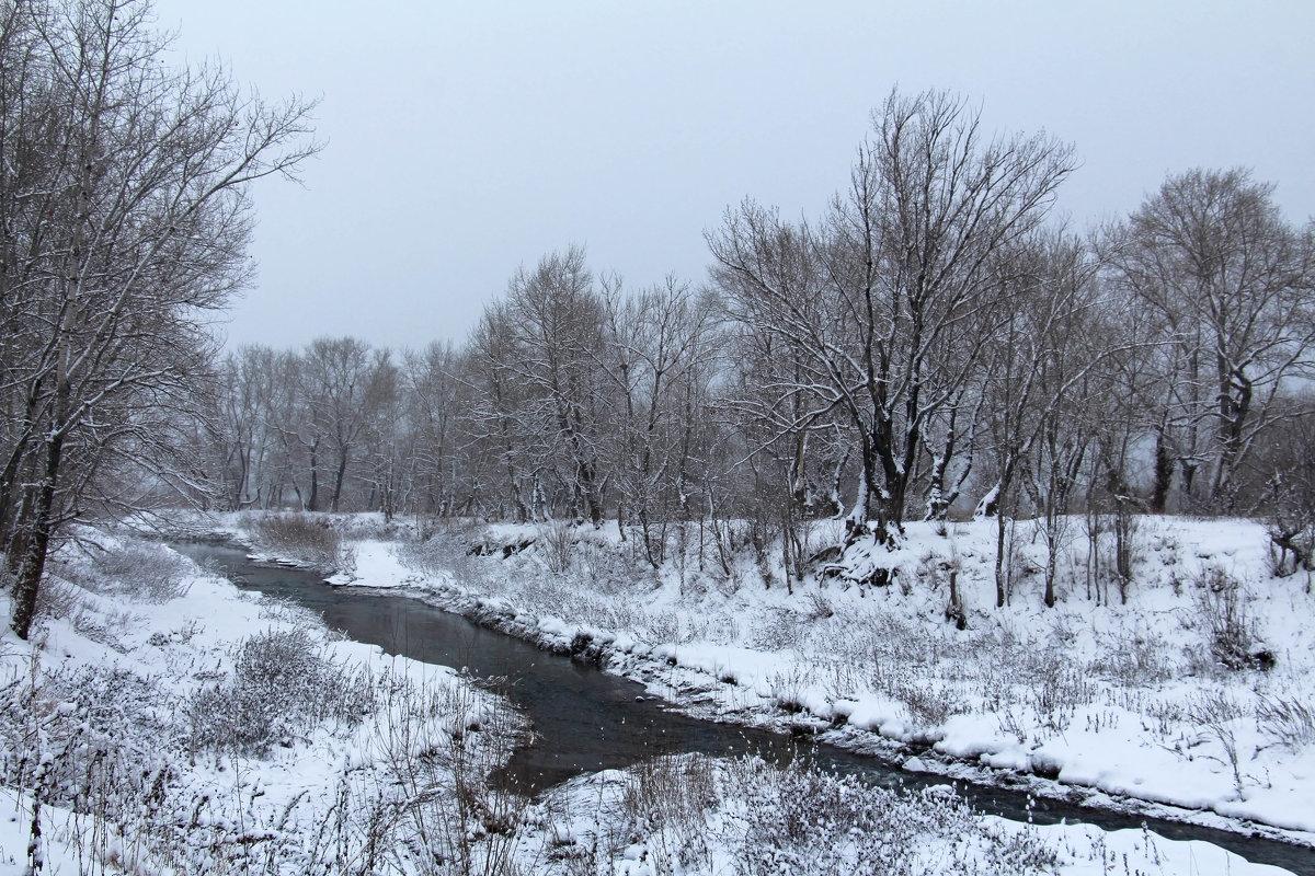 Снежный январь - Dr. Olver  ( ОлегЪ )