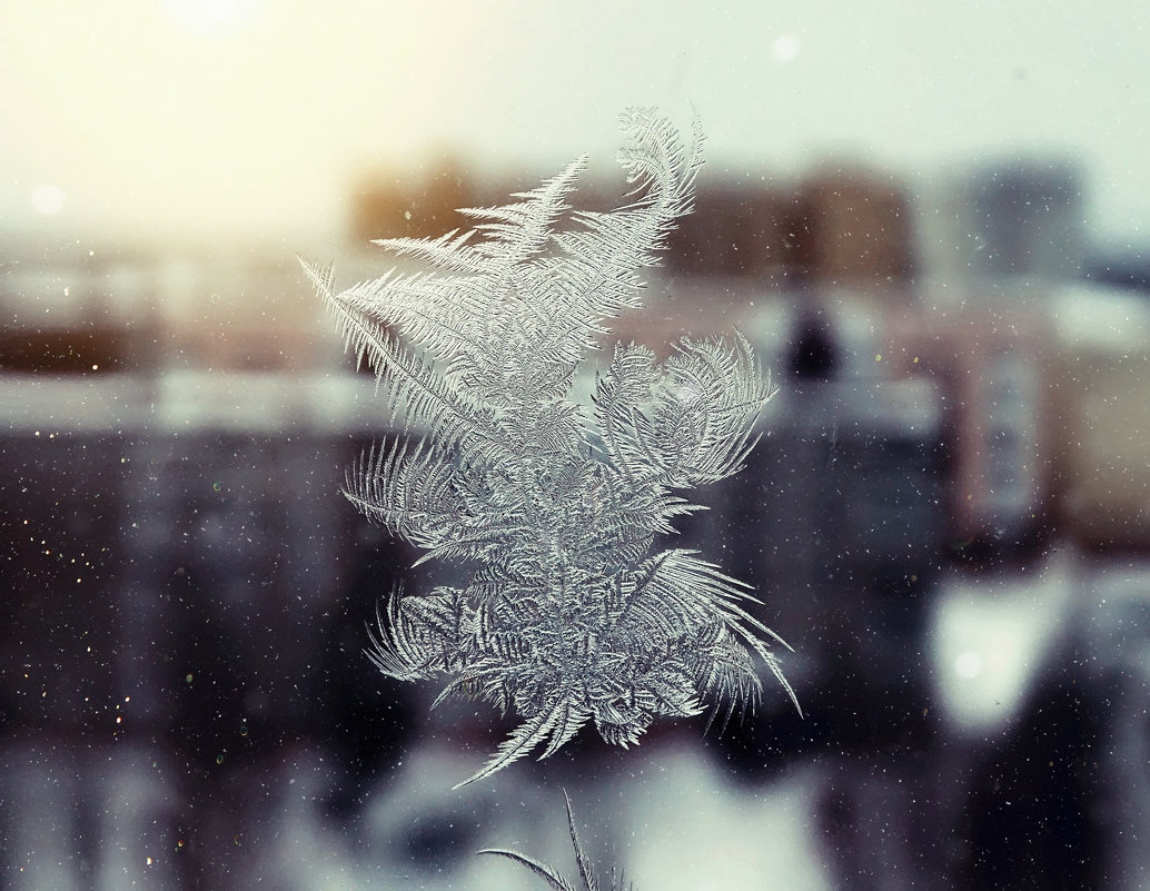 Ведь по узорам на стекле, Что нарисованы морозом, Узнать возможно о судьбе, И загадать желанье можно - Наталья