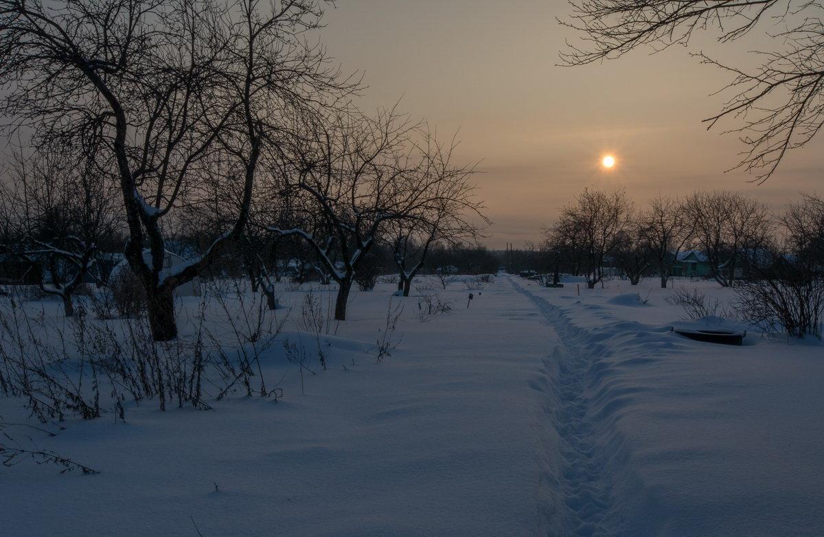 зимняя тропка - Алексей -