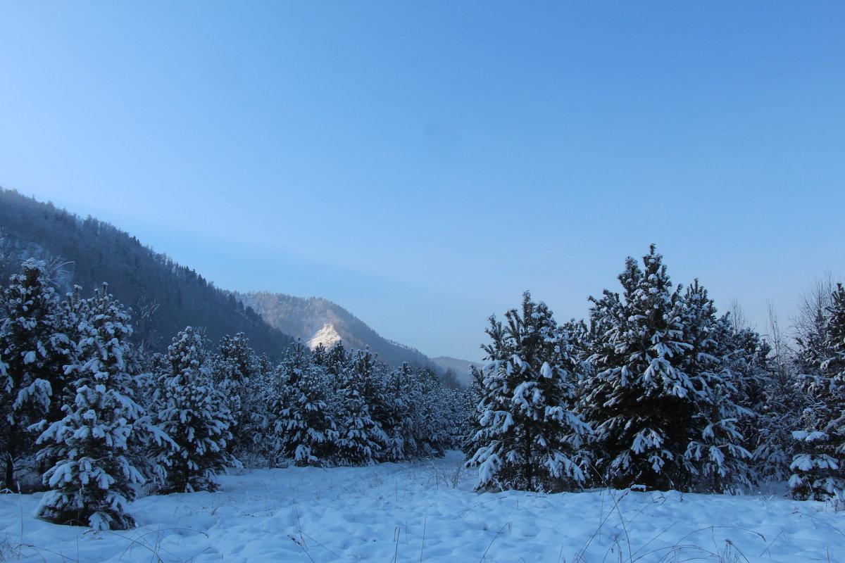 Морозное утро - Лариса